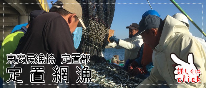 定置網漁。新船操業中