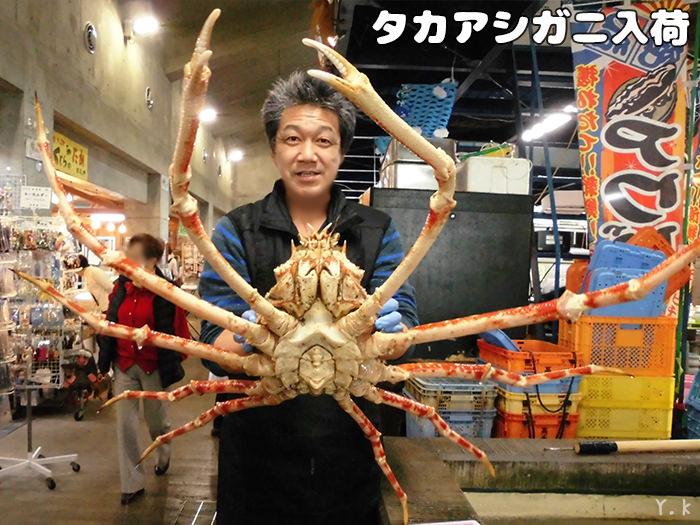 南房総 漁協 タカアシガニ 道の駅 千倉