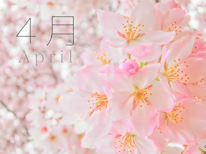 4月 東安房 南房総 千倉 漁協